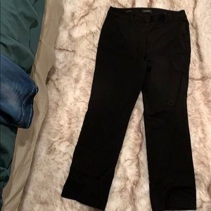 Talbot Barely Boot size 14 dress pants